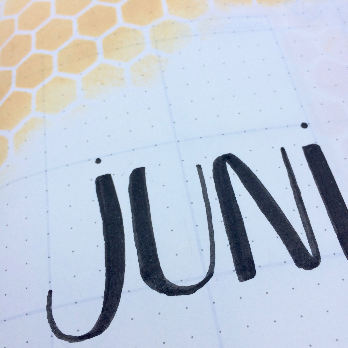 June preview 1